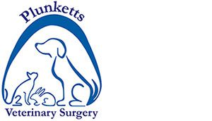 Plunketts Veterinary Surgery